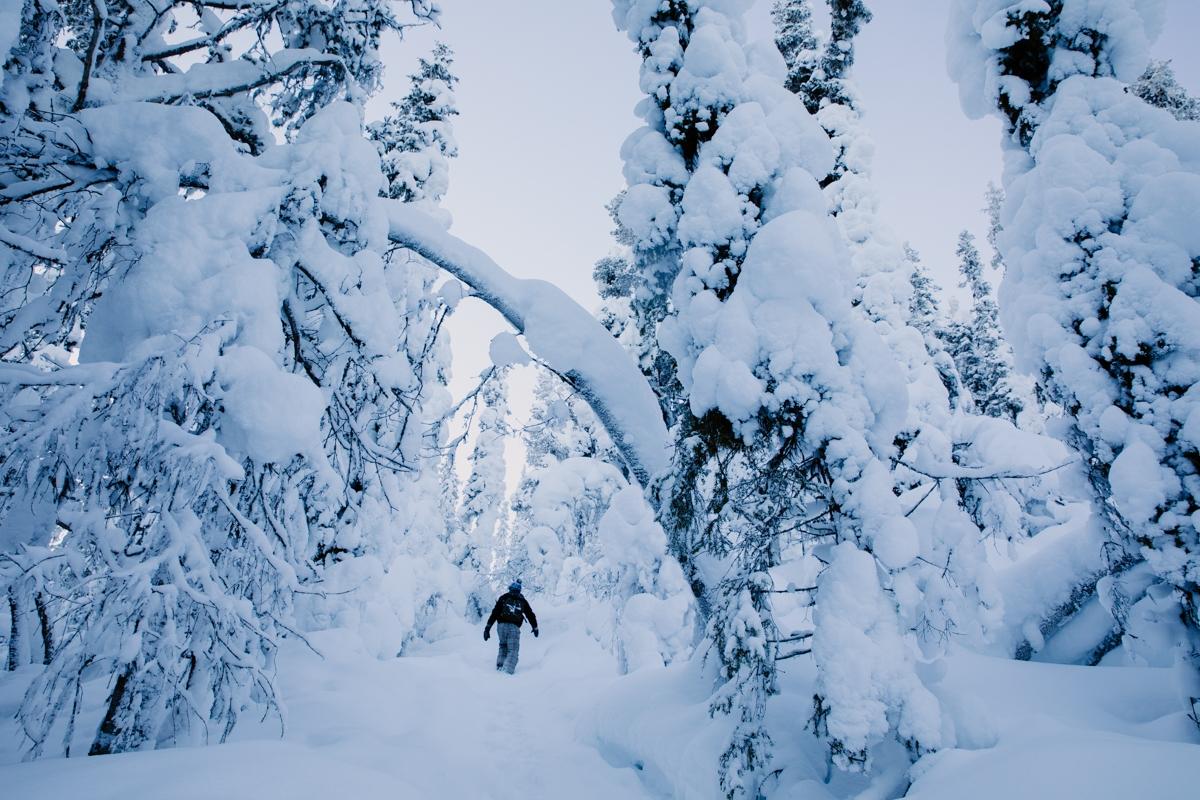 elopement snow sweden photography