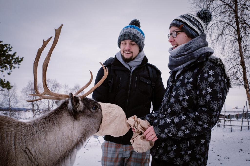reinder sweden lapland couple