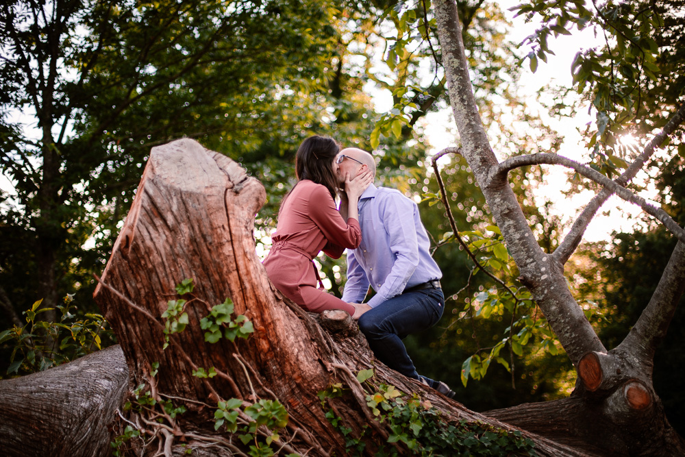 parc de la chantrerie Nantes couple love session